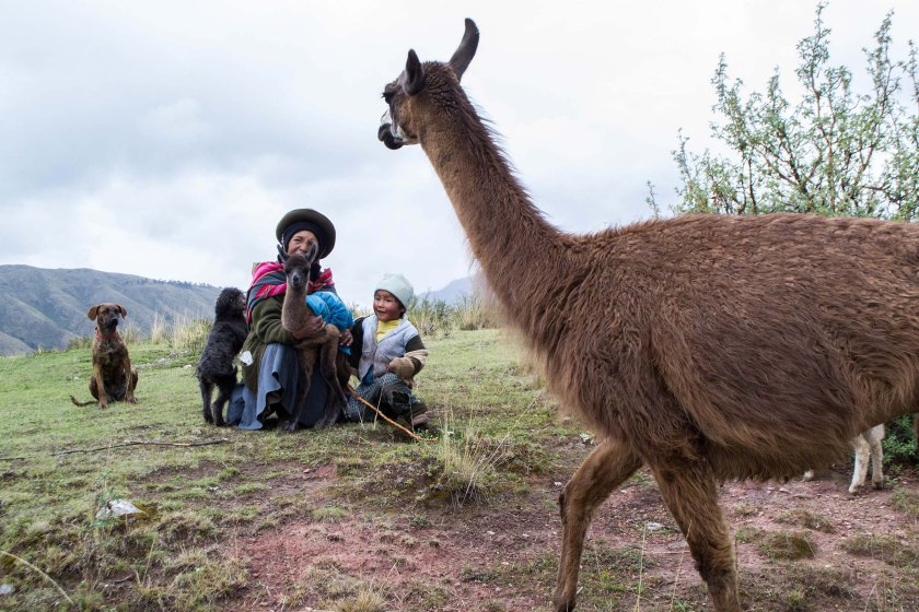 A Quechan family poses for a picture near Cuzco, Peru, on Dec. 27, 2014. The Quechas, the indigenous people of Peru, are agriculturally-based and farm in the mountains of Peru. (Danika Worthington)